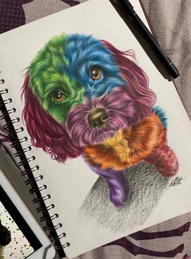 Животные карандашом — красивые реалистичные рисунки